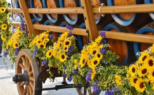 עיצוב אירועים עם סידורי פרחים